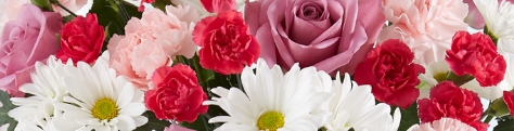 SAVE ON FRESH FLOWERS & GIFTS